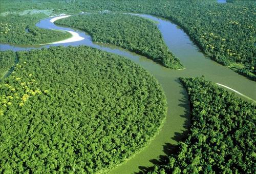 巴西铁矿石生产商淡水河谷称,已批准恢复巴西北部的Serra Leste矿区的运营